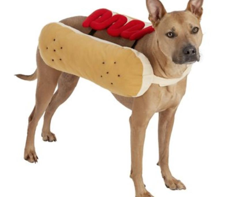 hotdog ketchup costume for dog or cat